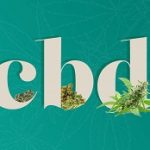 What is CBD? How to Use CBD Oil?